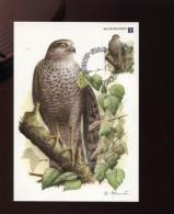Belgie Buzin Vogels Birds Uit Reeks 4030/34 Maximumkaart RR Cachet Stampilou - Cartes-maximum (CM)