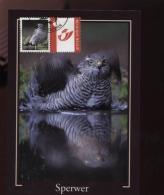 Belgie Buzin Vogels Birds DUOSTAMP Uit 4030/34 Maximumkaart RR - 1985-.. Oiseaux (Buzin)