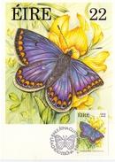IRELAND BUTTERFLY MAXIMUN POST CARD 1985 3 PIECES   (SET160285) - Cartoline Maximum