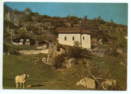 GURTNELLEN Kapelle Maria Hilf, Kuh - UR Uri