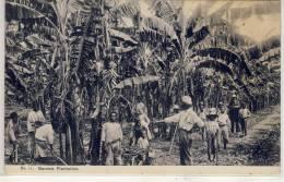 JAMAICA - BRITISH WEST INDIES 1900s, Duperly PC, Men & Boys Working At Banana Plantation, Used 1909 - Jamaica
