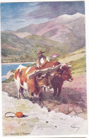 SAGONE. - Le Labourage. Superbe Carte Illustrée Par EVEN En 1906.  Editions JDC - France