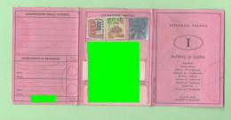 PATENTE GUIDA PERMIS DE CONDUIR DRIVING LICENSE Scaduta 2014 - Vecchi Documenti