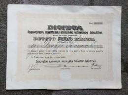 AKTIE   SHARES   STOCK   STOCKS   BONDS   CAKOVEC  ČAKOVEC  PAROMLIN  1920. - Electricité & Gaz