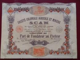 PART DE FONDATEUR SOCIETE COLONIALE AGRICOE ET MINIERE SCAM DECO - Afrique
