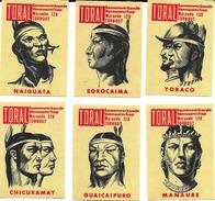 Beau Lot De 6 Etiquettes De Boites D'Allumettes - Belgique - Indiens - Toral Warande128 Tornout - Matchbox Labels