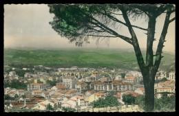 GALIZA - ORENSE - Vista Parcial Co Viaduto ( Ed. La Region Nº 74)  Carte Postale - Orense