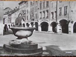 88 - REMIREMONT - Fontaine Du Cygne Et Les Arcades De La Grand'Rue. (Commerces: Hôtel, Librairie...) CPSM - Remiremont