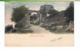 CPA-1904-POLOGNE-MARIENBURG MIT KAPELLE- - Poland