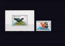 SURINAME, BIRDS - Oiseaux
