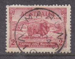 Australia, GVR,1934, Merino Sheep / Macarthur2d, MARONG VIC. , 1934.d.s. - Used Stamps