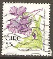 Ireland 2004 SG 1678 55c Definitive Fine Used - 1949-... Repubblica D'Irlanda