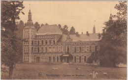 27887g  CHATEAU DE BOUILLON - KASTEEL - Havelange