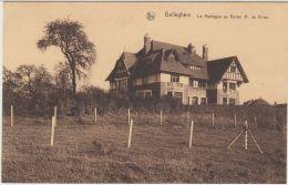 27899g  MONTAGNE AU BARON M. DE VIRON - Belleghem - Kortrijk