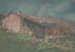 8242-PIALPETTA-FRAZIONE RIVOTTI(TORINO)-RIFUGIO C.A.I. VALLI DI LANZO-FG - Italia
