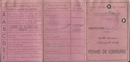 Document DO000122 - Algeria (Algérie / Algerien / Alzir) Driver's Licence - Historical Documents