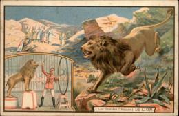 ANIMAUX - LION - Les Grandes Chasses - Pub Chicorée A La Ménagère - Lions