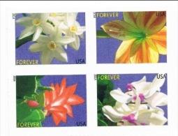 USA 2014 0.49c X 4 Winter Flowers MNH ** - Unused Stamps