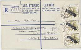 Malawi Trochocerus X 3 On Registered Letter - Birds