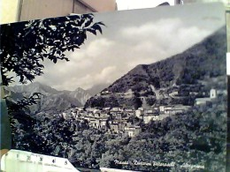 ALTAGNANA DI MASSA VEDUTA PAESE VB1957  FP5341 - Carrara
