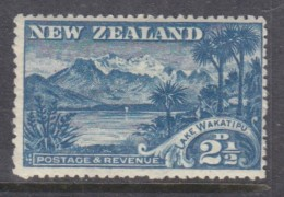 New Zealand 1906,  2 1/2d,WAKATIPU, MH* - Usati