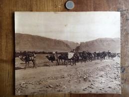 Photographie Ancienne De Photographe Connu Numéro 62 Lehnert Et Landrock - Afrika