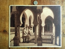 Photographie Ancienne De Photographe Connu Numéro 56 Lehnert Et Landrock - Fotos