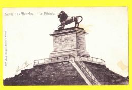 * Waterloo (Waals Brabant - Bruxelles) * (Edit René Berger, Braine L'Alleud) Le Piédestal, Lion, Butte, Monument, Rare - Waterloo
