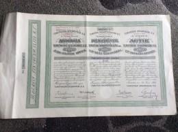 AKTIE   SHARES   STOCK   STOCKS   BONDS   TEMERINER SPAARKASSA  1921.  TEMERIN - Banque & Assurance