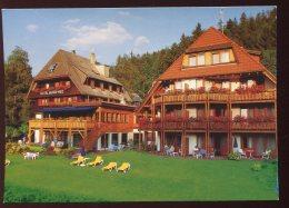 CPM Non écrite Allemagne HINTERZARTEN Hôtel Bergfried Famille Schön - Hinterzarten