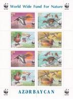 HOJA BLOQUE CON 8 SELLOS DE AZERBAIJAN DE WWF CON  PATOS (BIRD-DUCK) NUEVOS-MINT - Azerbaiján