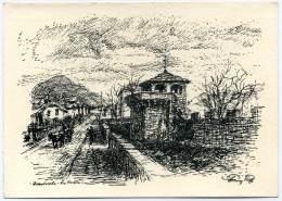 Q.117  DOMODOSSOLA  - Illustrata R. Paggi - Other Cities