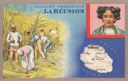 France -  La Réunion - Histoire Géographie - Culture Canne à Sucre - Lion Noir Paris Montrouge - La Réunion