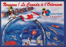 44 LE CROISIC Océarium, Nouveau ! Le Canada à L'Océarium - Le Croisic