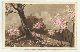 FIORI ILLUSTRATA 1933 VIAGGIATA FP - Künstlerkarten