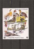 WWF ( BF XXX -MNh- De Jevish ) - W.W.F.