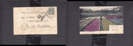 """Netherlands Tulipfields + Worker, Cows, Used 1903 HARLEM > CAPE TOWN, Postage Due H/s """" 1d"""" - Netherlands"""