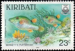 KIRIBATI - Scott #567 Canthigaster Bennetti / Used Stamp - Kiribati (1979-...)