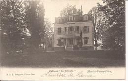 Mortsel Oude God - Vieux Dieux: Château Les Tilleuls - Mortsel