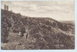 Leith Hill - Surrey