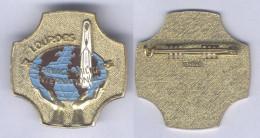 Insigne Du Pélerinage Militaire International De Lourdes - Landmacht