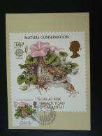 Carte Maximum Card Grenouille Frog Europa Grande Bretagne Great Britain 1986 - Rane