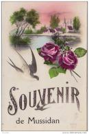 24) MUSSIDAN - SOUVENIR - (CARTE FANTAISIE - PAYSAGE AVEC FLEURS ET HIRONDELLE  PORTE  BONHEUR) - Mussidan