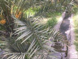 UNESCO World Heritage - Site UNESCO - Oman - Aflaj Irrigation System Of Oman - Oman