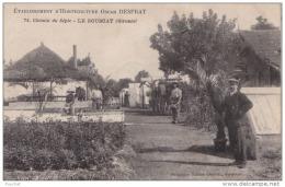 33) LE BOUSCAT (GIRONDE) ETABLISSEMENT D'HORTICULTURE OSCAR DESPRAT 74 CHEMIN DU SEPIC - (BELLE ANIMATION) - France