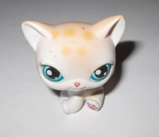 LITTLEST PETSHOP CHAT SIAMOIS CAT LPS 224 - Cats