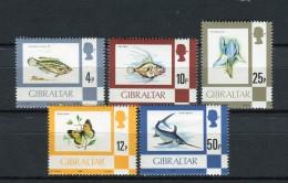 Gibraltar 1981. Yvert 420-24 ** MNH. - Gibraltar