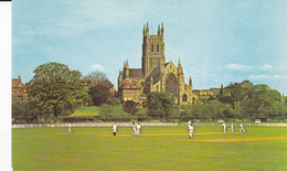 WORCESTER, Worcestershire, England, United Kingdom; Cathedral From The County Cricket Ground, 1940-60s - Worcestershire