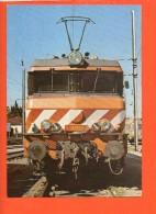 Chemin De Fer - Train - Linha Do Norte - Trains