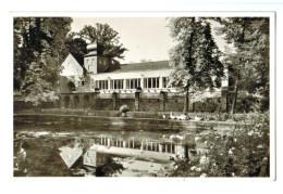 13023 Cpa   ZWEIBRUCKE  ; Fasanerie , Carte Photo 1954 - Zweibruecken